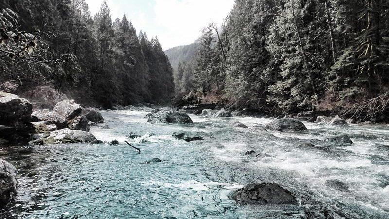river_klein
